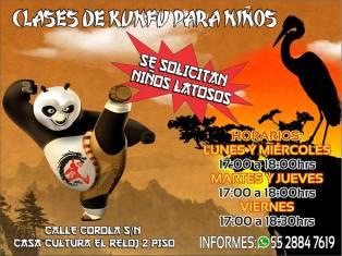 kung fu jing wu